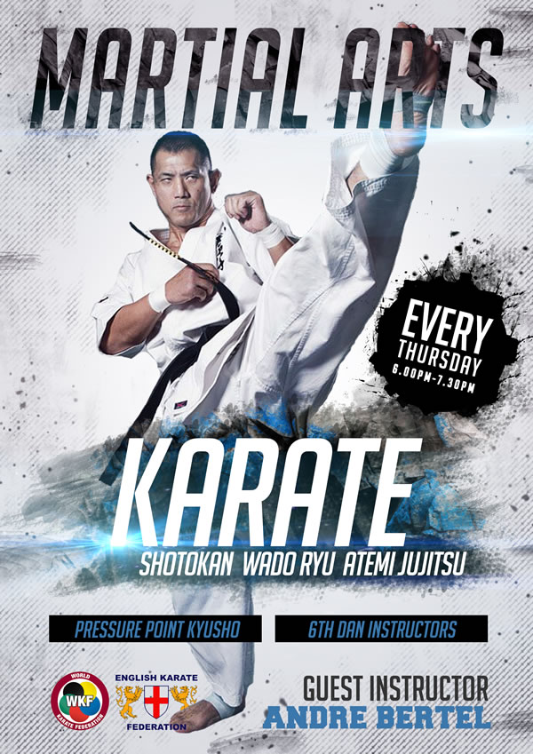 Karate club art work